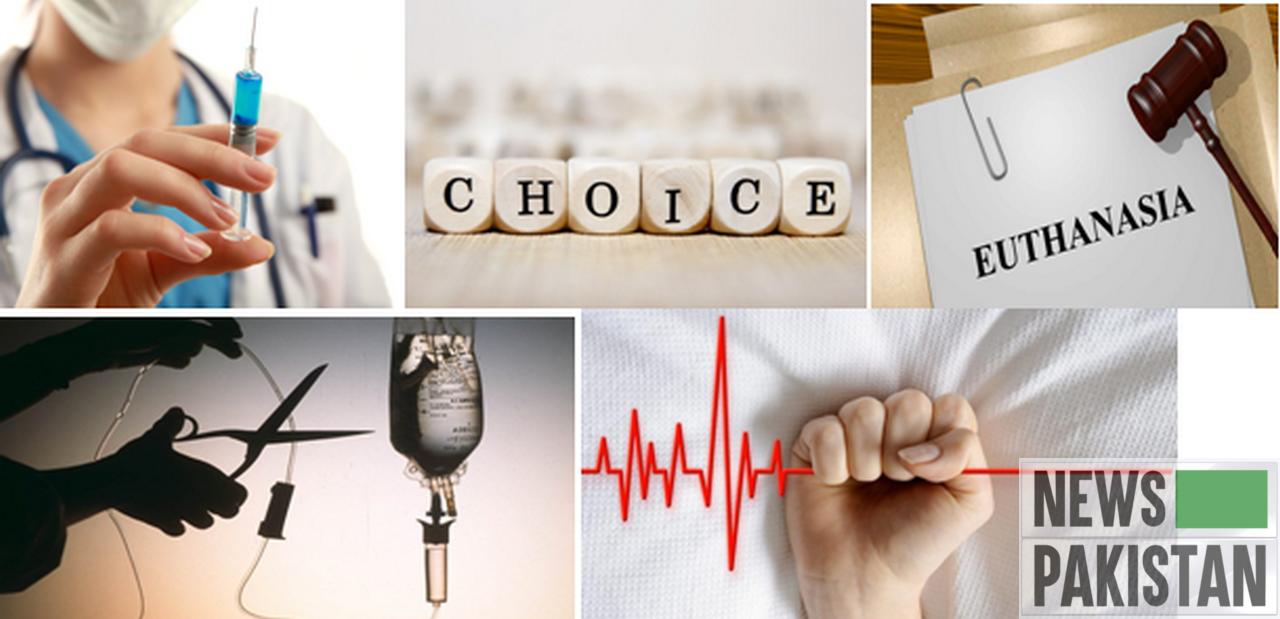 australian euthanasia regularions essay