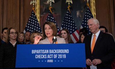 US Dems introduce gun background check bill